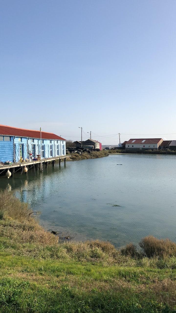 (1) appartement vue mer à la Nuitée ou semaine
