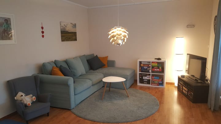 Cosy room for rent. walking distance to town!