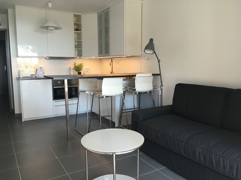 Salon et cuisine americaine  Living room and kitchen
