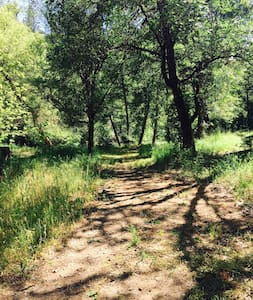 13 Acre Mountain Ranch - Perfect for Families - Nevada City