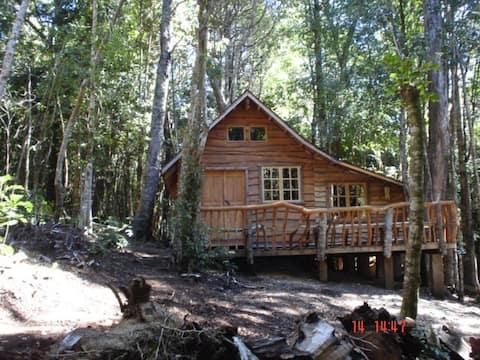 Cabaña rustica, patagonia chilena, Tita.