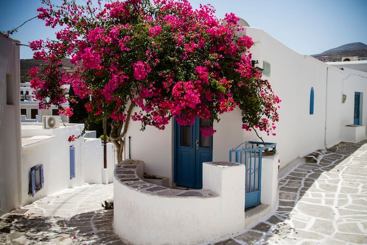 Beautiful traditional house in Paros - Paros - Rumah