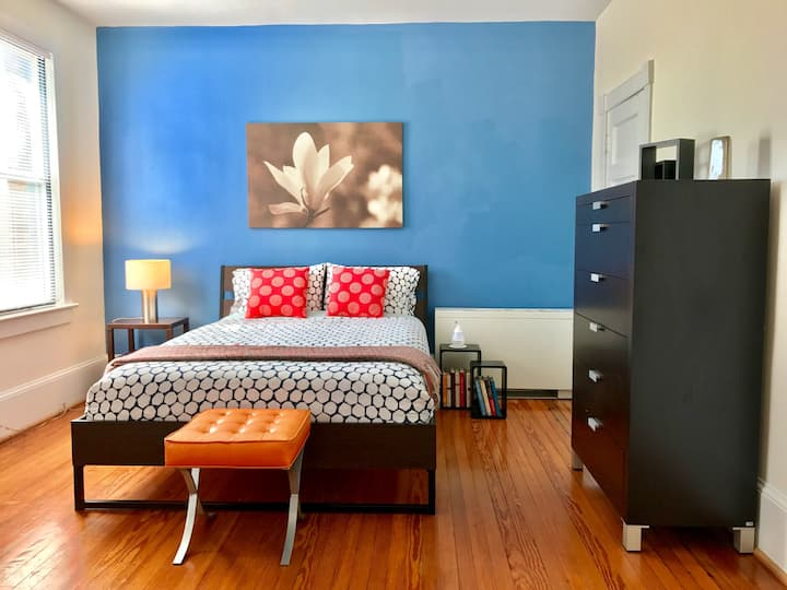 Spacious Apartment in Adams Morgan