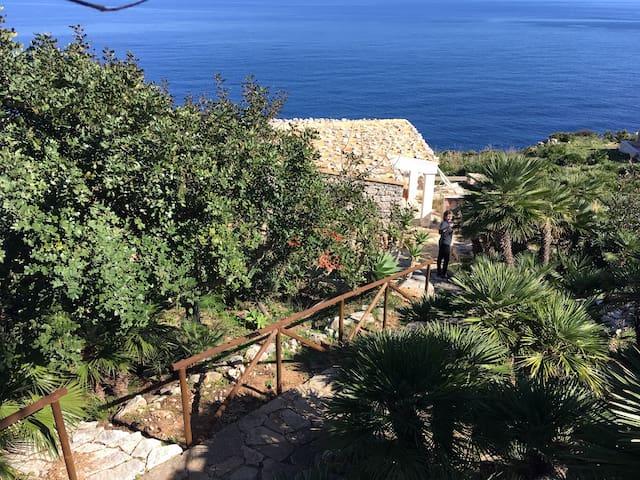 "SEA FRONT ""Le Palmette"" 2/4 guests, WIFI free"