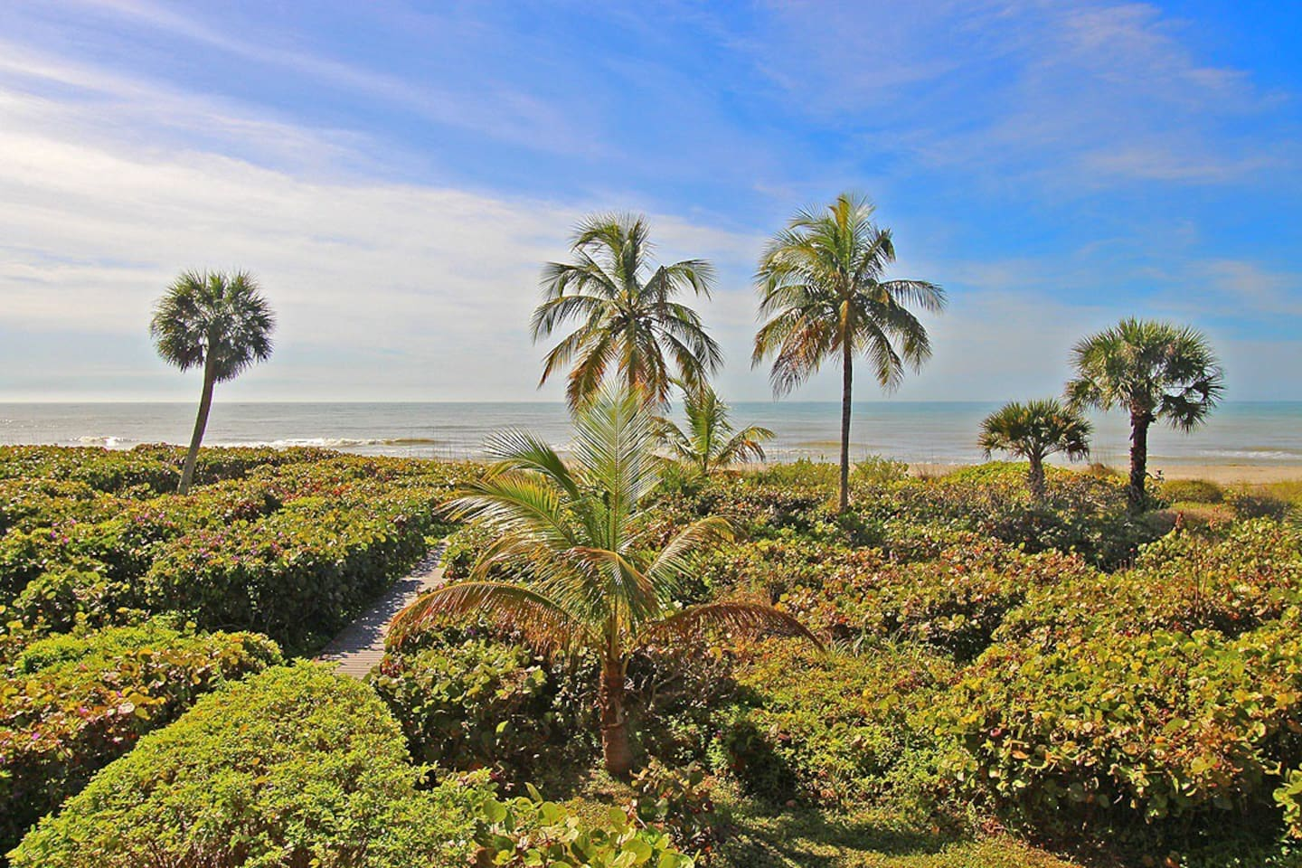 Wide view of the beach from gulf-front condo!
