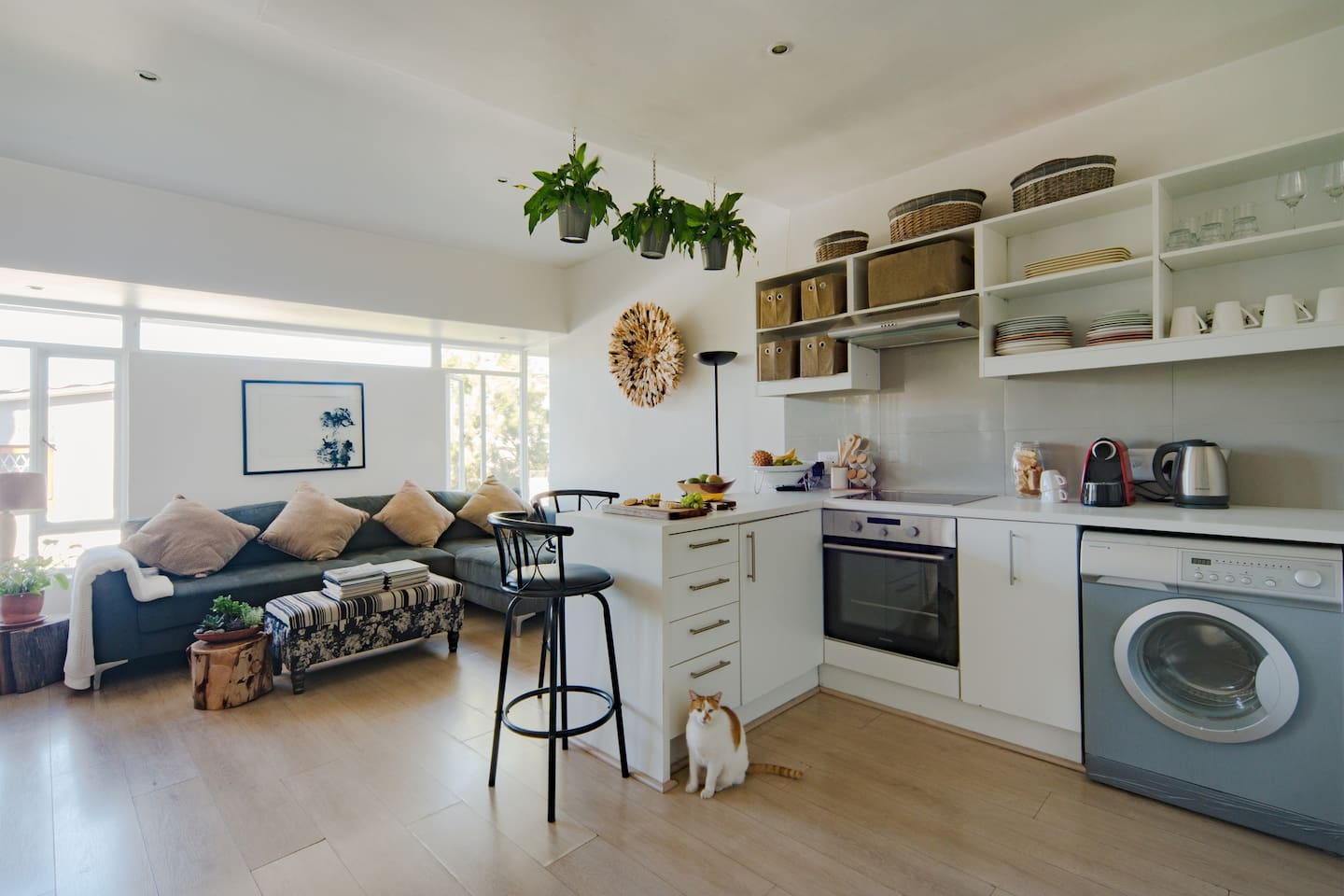 charming apartment in the center of cape town apartments for rent