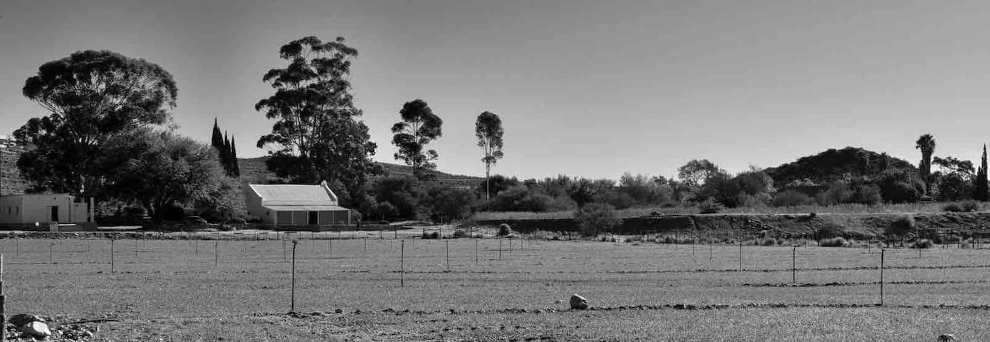 Prince Albert Farm Stay