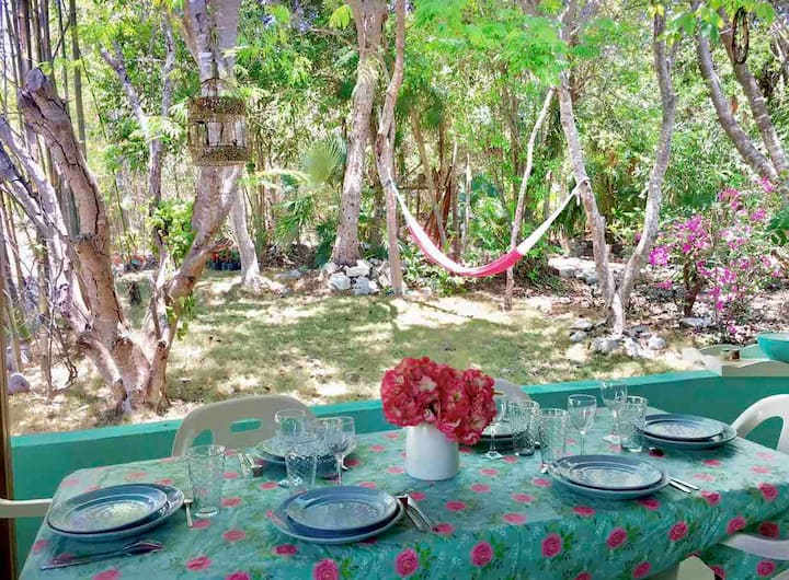 La Casita Azul, JUNGLE VIEW, come to enjoy NATURE!