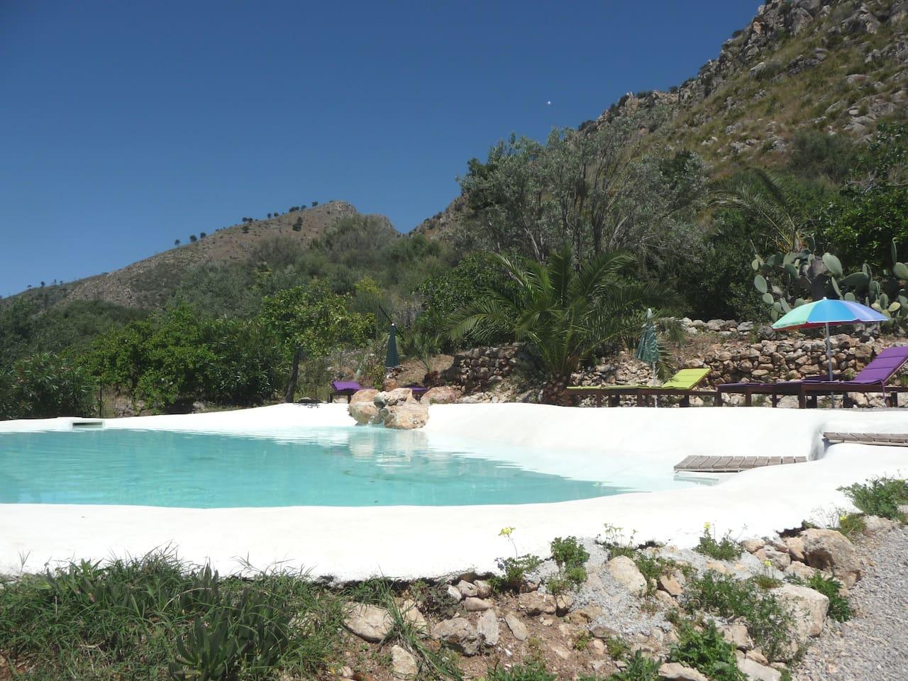 piscina a forma di laghetto naturale in mezzo a giardino mediterraneo