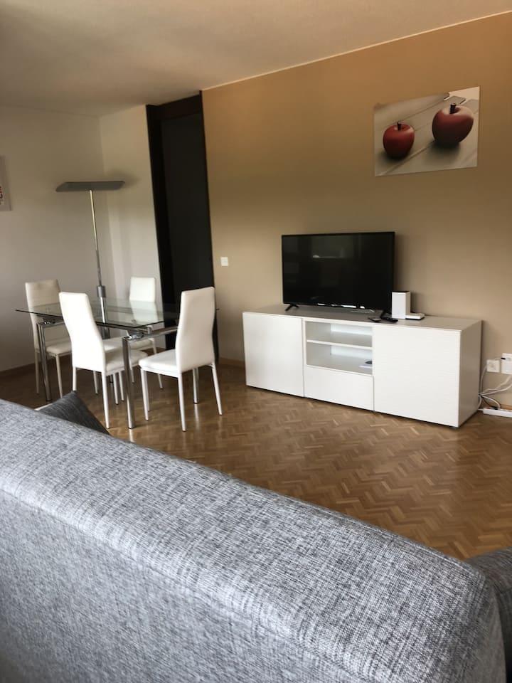 Spacious apartment by the lake (FAGGI 14)