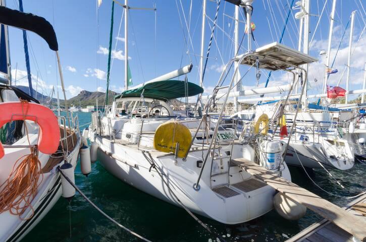 Barco Fenicia