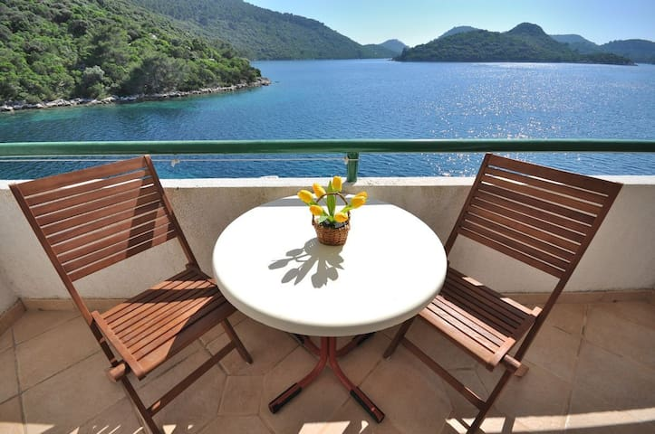 Studio Apartment, beachfront in Pasadur - island Lastovo, Balcony