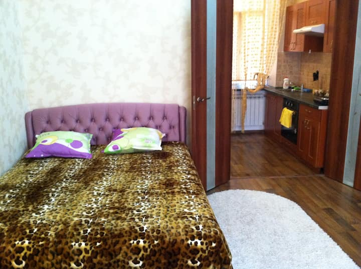 Modern 1-bedroom in heart of Odessa City