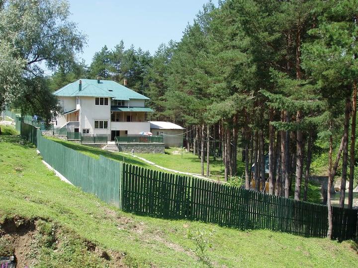 Villa Doina Ecotour, Room 1