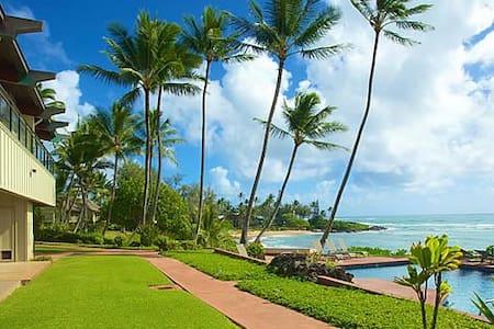 Hale Awapuhi Villa 1B Oceanfront 2 Bedroom - カパア