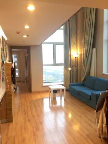 地铁旁的北欧阳光公寓 交通便捷 视野开阔(下层) - Tianjin - Apartamento