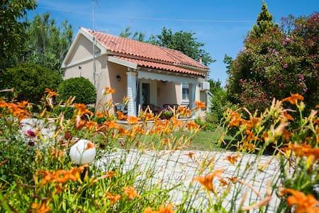 """Villa """"SPITAKI"""" Astrakeri"""
