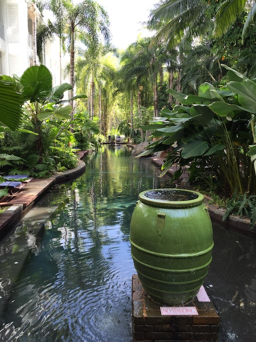 Our Serenity pool where you swim amongst the rainforest.