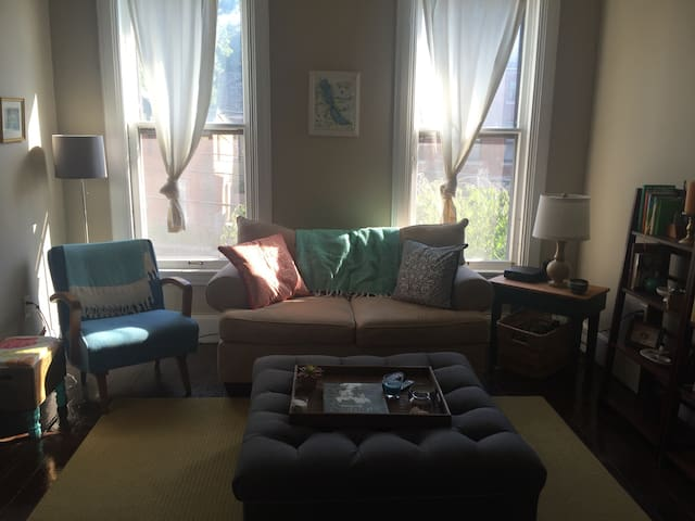 Spacious Victorian townhouse 5 min. from campus - Syracuse - Apartment