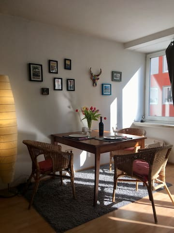 Cozy Studio Apt in Central Munich