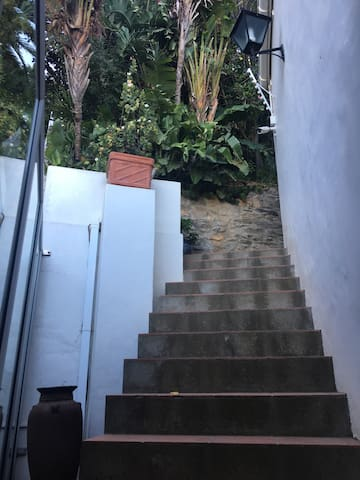 Steps up to the studio