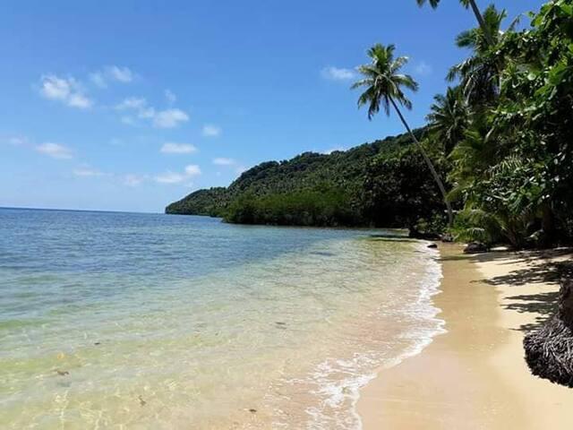 Vianuca Qamea Island