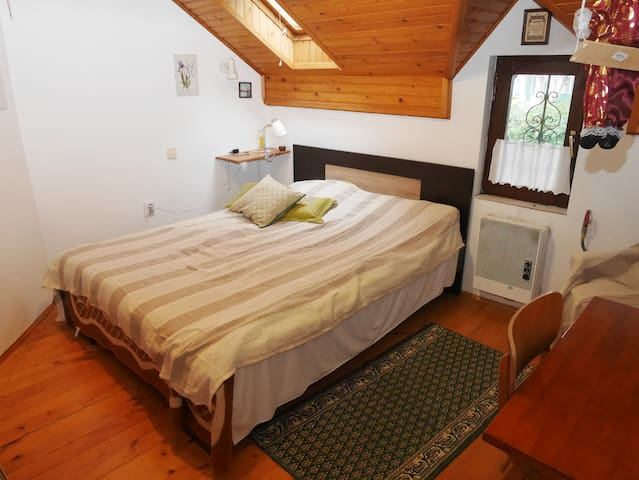 Room in house in a quiet suburb area - Sremska Kamenica - Haus