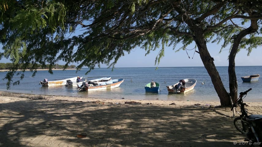 Oceanviews in Playa Buen Hombre