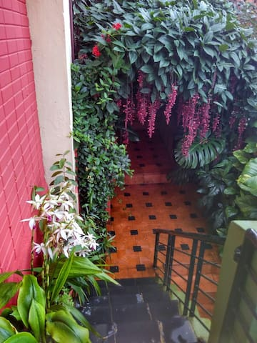 The entrance of the building with a set of beautiful hanging flowers