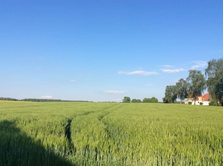 """Ferienwohnung am Reinhardswald - """"Buchenzweig"""""""