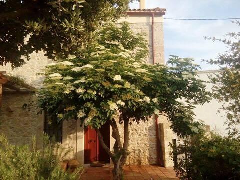 "Casa de huéspedes cretense ""Agioklima"" Voutes Heraklion"