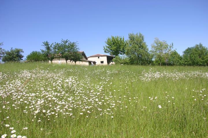 L'annexe d'Auzac - Grignols - Dům pro hosty