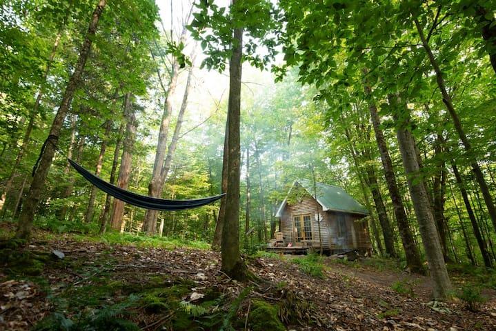 Refuge en forêt, feu de camp, paix, rando, lecture
