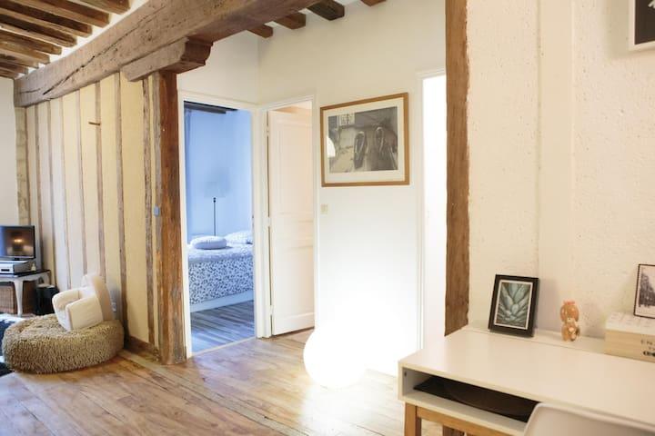 Appartement de charme, centre historique
