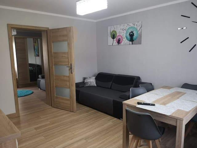 Apartament 6 osobowy w Domku na Wzgórzu - Muszyna