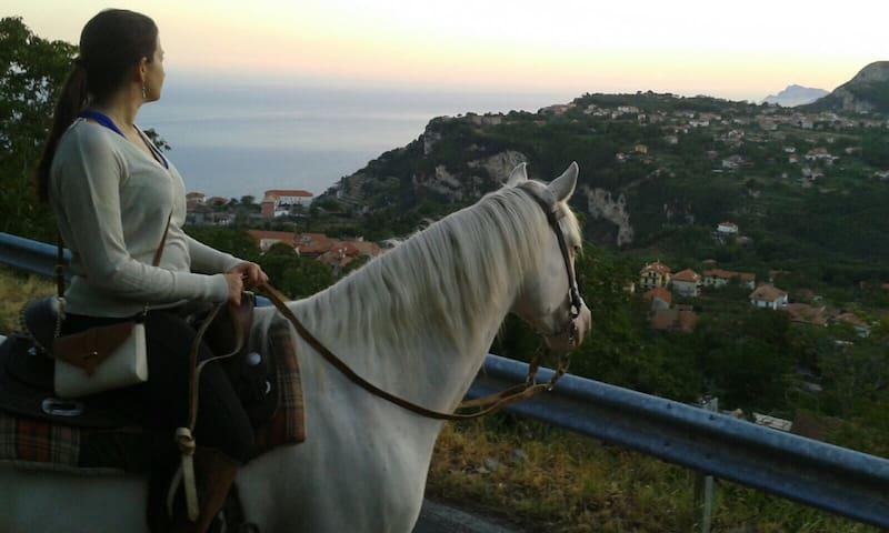 HorseRiding TOUR AmalfiCoast, Cheese&Wine tasting