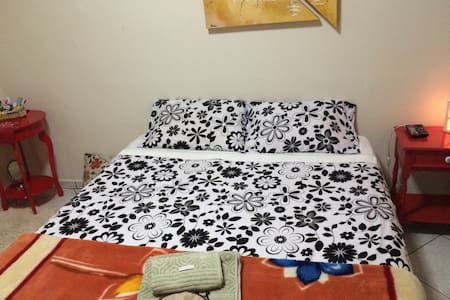 Double suite, Santo Andre / comfortable SP - santo andre - House