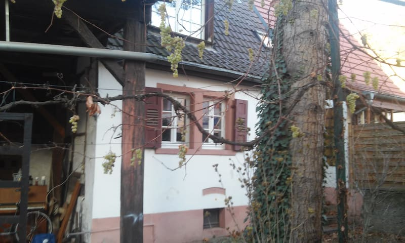 Bauernhaus in der Stadt - ไฮเดลเบิร์ก - บ้าน
