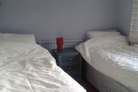 Two single beds in my spare room. - Abergavenny
