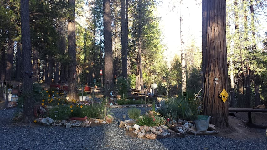 YOSEMITE BEAR RETREAT - Coulterville - Huis
