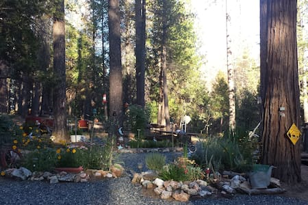 YOSEMITE BEAR RETREAT - Coulterville - Haus