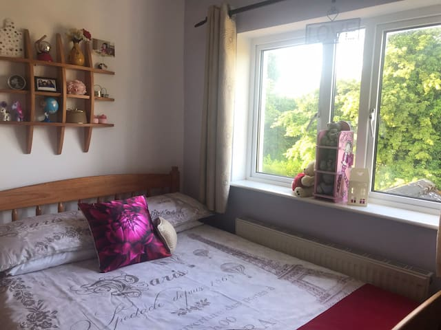 Roscommon Cozy Double room, Familiar Space