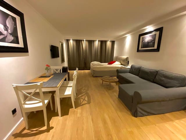 Perfect modern 2 room apartment with 65 m2