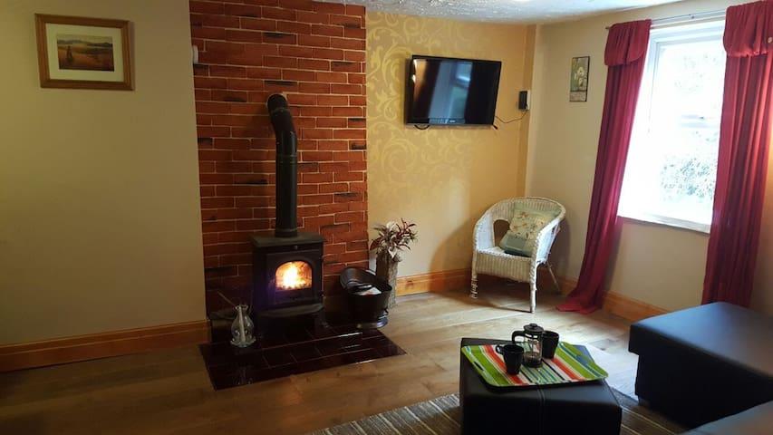 Bronfelin Annex - Cynghordy - Huis