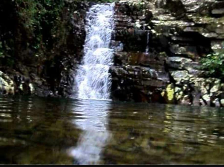 cachoeira com trilha a 700 metros da casa