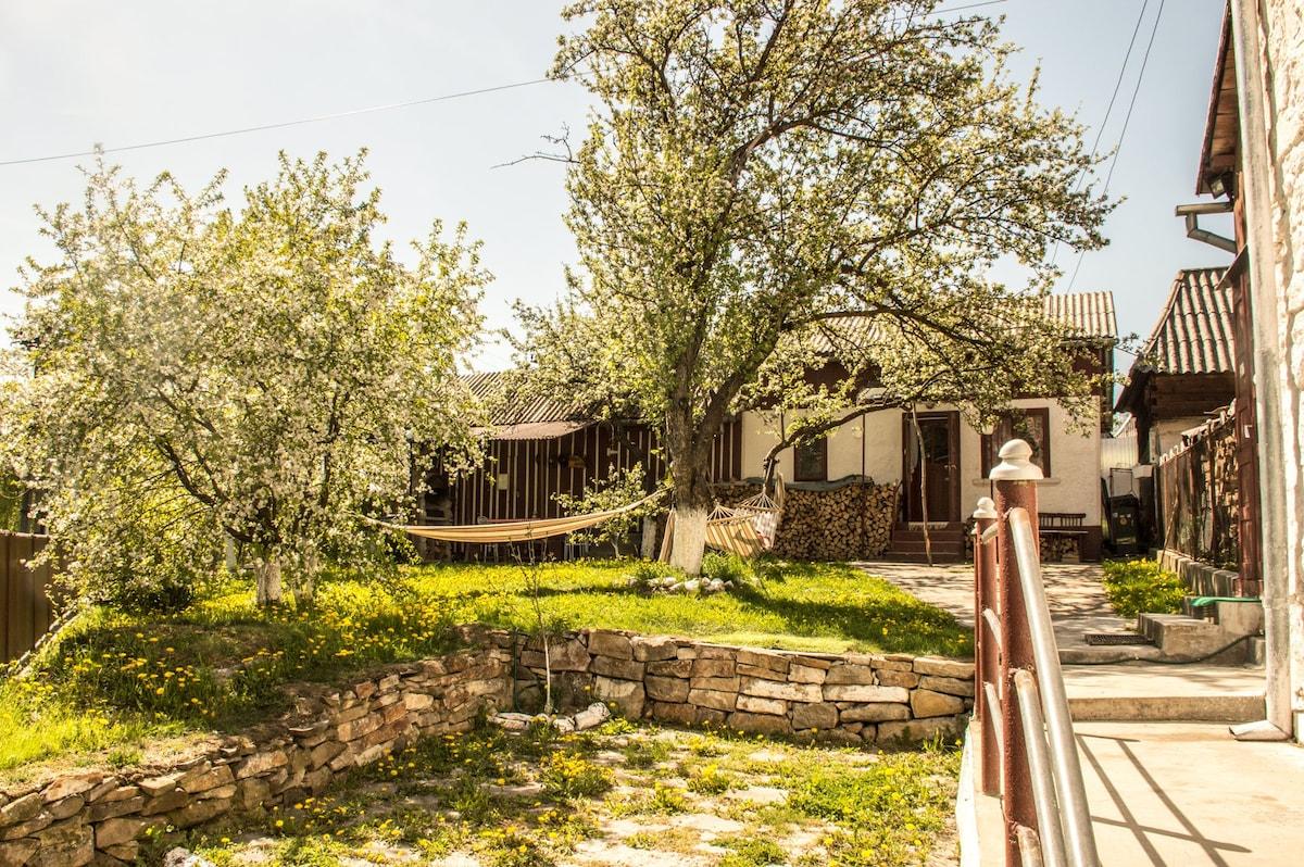 Abrud Vacation Rentals & Homes - Alba County, Romania | Airbnb