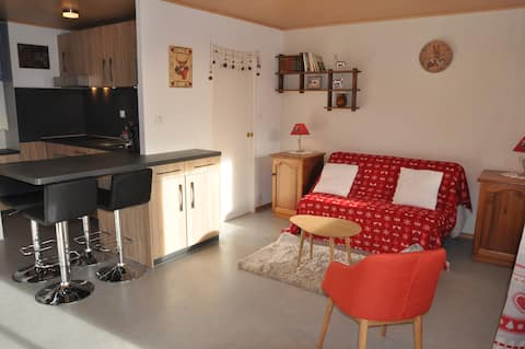 Maxi studio in the heart of The French Alpes