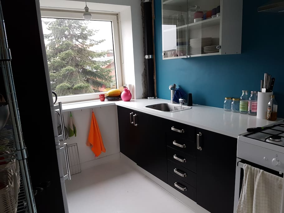 Fully functional kitchen, with oven, microwave, fridge, freezer and gas stove