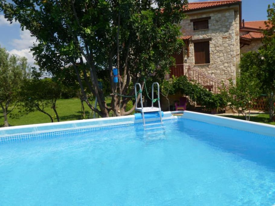 Steliana's swimming pool