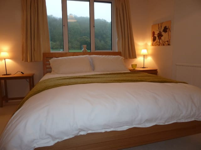 Ensuite double room, king size bed - Hambledon - Bed & Breakfast